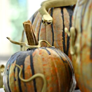diy-creepy-critter-pumpkin